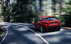 Картинка лес, скорость, трасса, автомобиль, Mazda 3