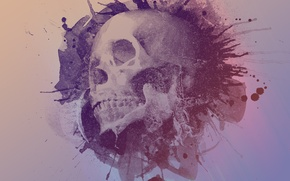 Обои Design, Стиль, Watercolour, Череп, Дизайн, Skull