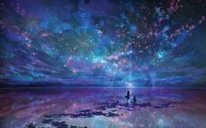 Картинка небо, девушка, ночь, океан, арт, пара, парень