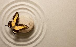 Картинка песок, бабочка, stone, butterfly, sand, oriental, zen