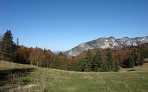 Картинка trees, nature, mountains, fall
