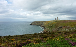 Картинка море, цветы, берег, маяк