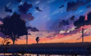 Картинка небо, девушка, облака, закат, природа, провода, аниме, арт, парень, двое, dias mardianto, donsaid