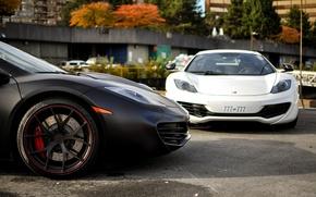 Картинка белый, черный, перед, суперкар, white, supercar, black, front, rim, МакЛарен, mp4, Mclaren, 12c