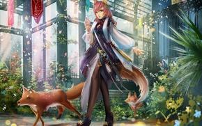 Картинка животные, девушка, здание, растения, лепестки, арт, лисы, ушки, liu