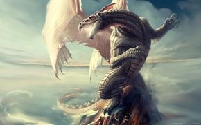 Картинка дракон, чешуя, neverwinter nights