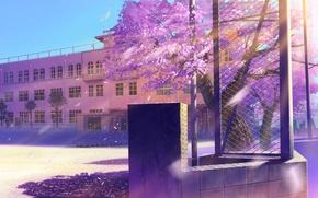 Обои пейзаж, блики, сетка, здание, лепестки, сакура, арт, школа, цветки