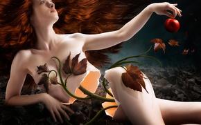 Картинка листья, девушка, растение, яблоко, стебель, раскол