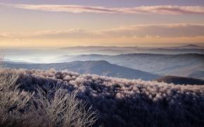 Картинка иней, лес, холмы, утро, долины