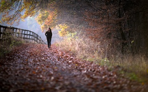 Обои ограда, осень, девушка, забор, прогулка