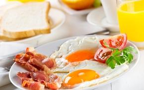 Обои завтрак, Breakfast, greens, tomatoes, яичница, бекон, зелень, помидор, bacon, scrambled eggs