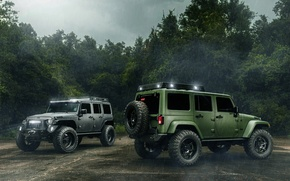 Обои Off Road, Jeep, Wrangler, Cars, Black, Green, Rain