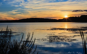 Картинка лес, солнце, закат, озеро, Mitch Van Beekum