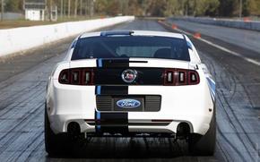 Картинка Concept, Mustang, Ford, Дорога, Белый, Cobra, Turbo, Багажник