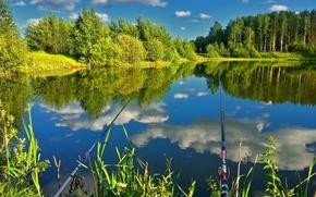 Картинка лес, природа, озеро, отражение, рыбалка, удочки