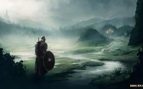 Картинка воин, namco, From Software, dark souls 2, bandai