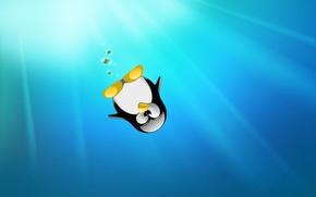 Картинка пингвин, wallpapers, linux