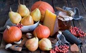 Картинка овощи, мёд, ягоды, сыр, тыква, натюрморт, фрукты, мед, груши