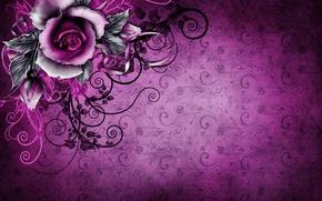 Картинка фон, роза, текстура, wallpaper, rose, vintage, texture, винтаж, grunge, purple, paper, floral