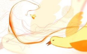 Обои линии, птица, рисунок, изгиб