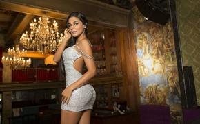 Картинка девушка, модель, фигура, платье, люстра, красотка, сексуальная, колумбийская, Татьяна Рамос, Tatiana Ramos, болельщица мадридского Реала