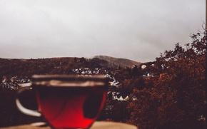 Картинка cup, village, tea, cloudy, rainy