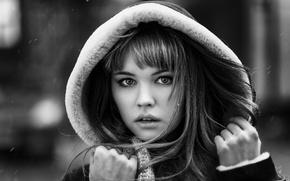 Картинка холод, зима, взгляд, девушка, снег, лицо, ветер, милая, модель, волосы, портрет, руки, губы, капюшон, черно-белое, …