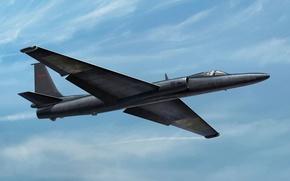 Картинка самолет, арт, американский, ВВС, разведчик, Lockheed, стратегический, название, высотный, США., У-2, модификации, неофициальное, Локхид, Dragon …