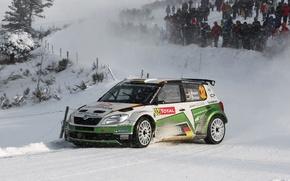 Картинка Зима, Авто, Снег, Спорт, WRC, Rally, Skoda, Fabia, Фабия, Sepp Wiegand, Frank Christian