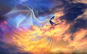 Обои дракон, крылья, Ангел