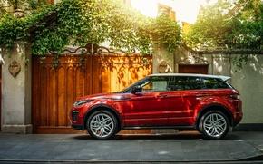 Картинка Evoque, ленд ровер, рендж ровер, Land Rover, Range Rover, эвок
