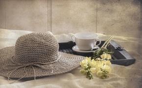 Картинка цветы, фон, шляпка