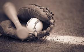 Картинка bat, ball, baseball, glove