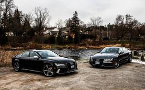 Обои две, black, Audi, RS7, природа