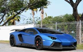 Картинка Lamborghini, Aventador, Novitec, Torado