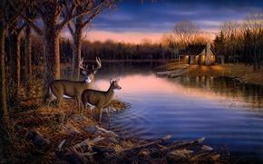 Картинка осень, лес, животные, вода, деревья, закат, природа, озеро, дом, пруд, река, лодка, вечер, живопись, олени, ...