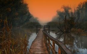 Картинка деревья, туман, озеро, утро, деревяные мостки
