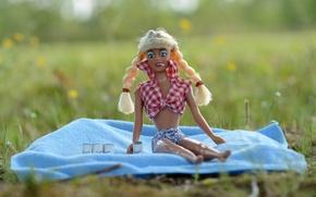 Картинка юмор, кукла, косички