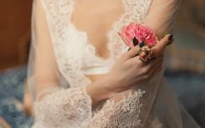 Картинка цветы, роза, руки, невеста
