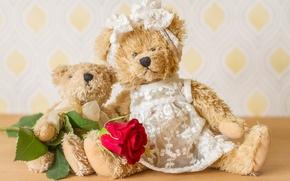 Картинка цветок, игрушки, роза, медведи, плюшевые мишки