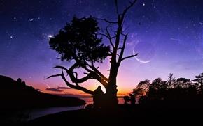 Картинка звезды, закат, река, люди, дерево, планеты, телескоп