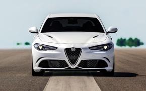 Картинка Alfa Romeo, Quadrifoglio, Giulia
