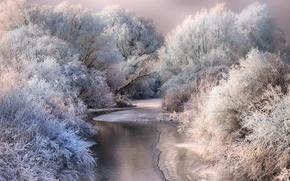 Обои зима, снег, природа, иней, деревья, река, лёд