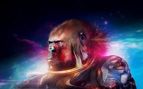 Картинка арт, горилла, обезьяна, рисунок, desktopography