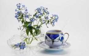 Обои цветы, чашка, фон