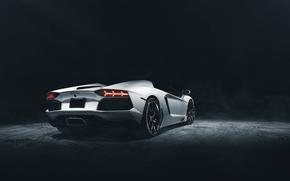 Картинка Roadster, Lamborghini, Dark, White, Studio, LP700-4, Aventador, Supercar, Rear
