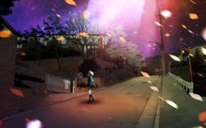 Обои дорога, листья, улица, звезды, ночь, небо, nagato yuki, suzumiya haruhi no yuutsu