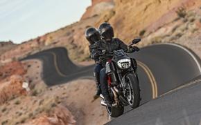 Картинка Ducati, Carbon, road, muscle, power, cruiser, Diavel, musclebike