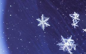 Картинка зима, синий, Снежинки