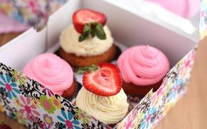 Обои коробка, выпечка, десерт, сладкое, кексы, белый, розовый, ягоды, крем, клубника